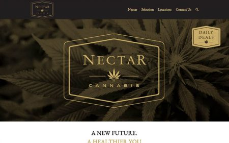 Rudtek Nectar